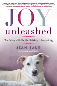joy unleashed cover